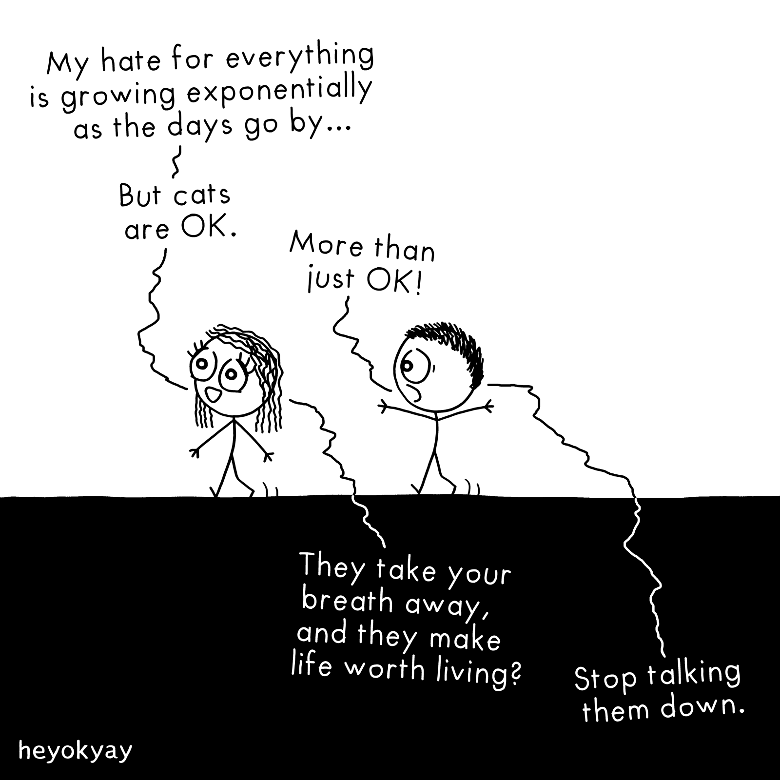 The Big Picture heyokyay comic